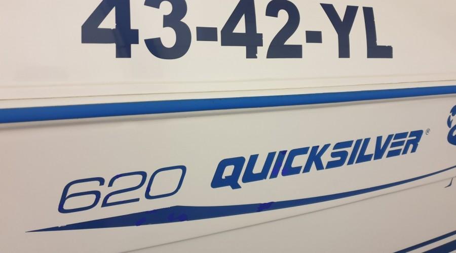 Quicksilver 620 Flamingo